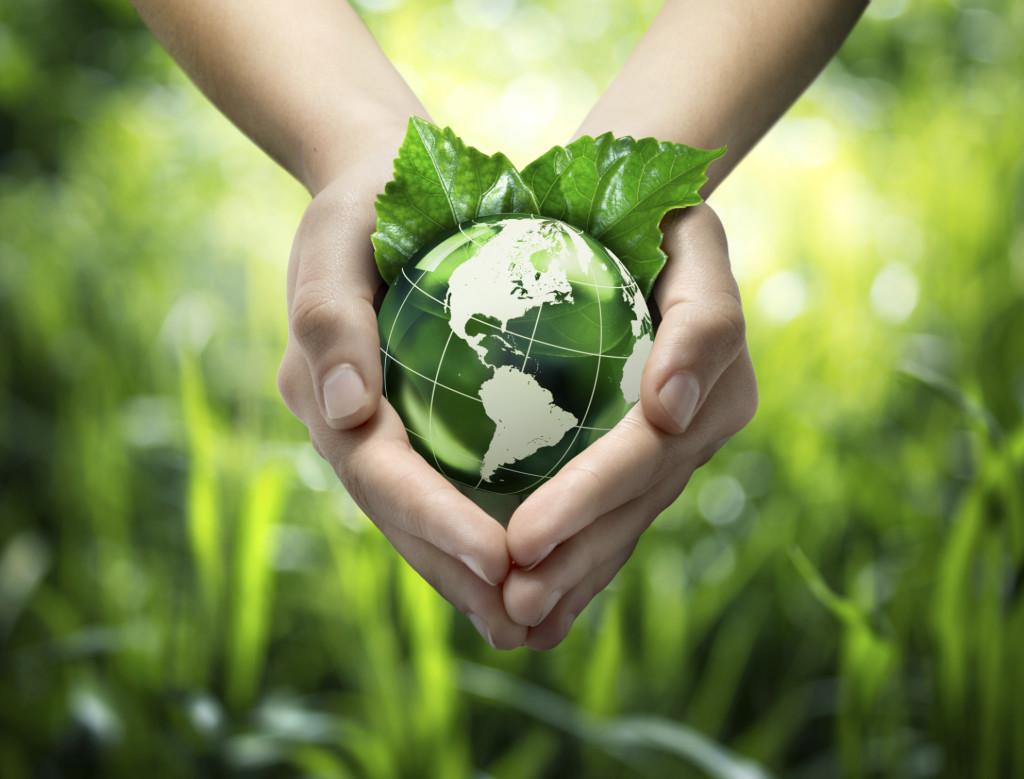 sostenibilidad colegio suizo madrid